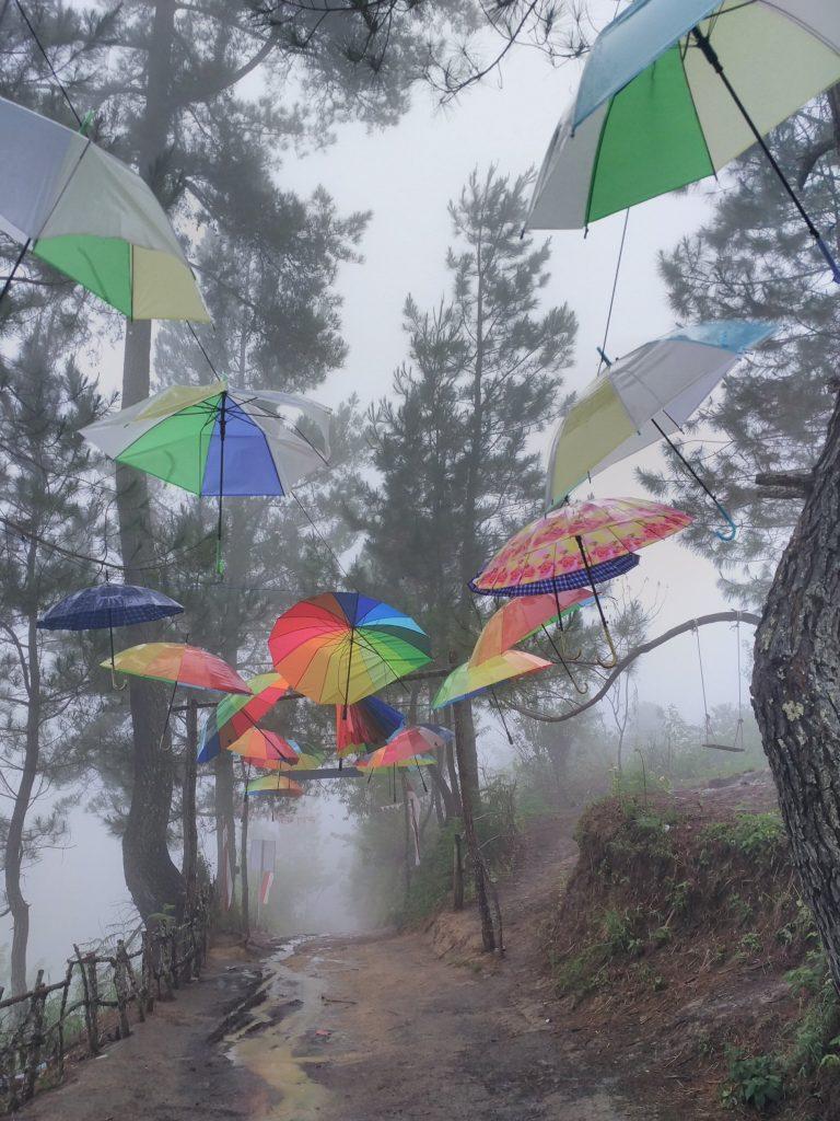 Hujan Kelabu (Sapardi Djoko Damono)